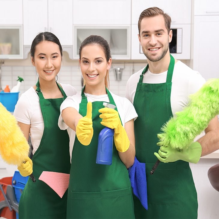 Professional cleaning items